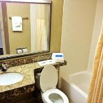 Φωτογραφία: Holiday Inn Charlottesville - University Area