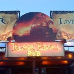 Black Pearl Bar