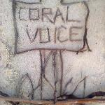 Coral Voice Home Stay and Bar