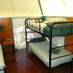  Bunks