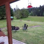 Back grounds from covered patio.