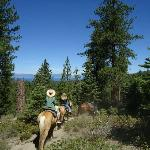 Two-Hour Trail Ride - The views are fantastic!
