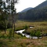 Foto de Toorongo River Sanctuary