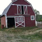  One of the barns.