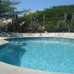 Casibarii Villa Pool