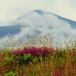 looking to the mountain Slieve Donard from the other side of the town on the links golf course