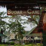 Photo of Sugar Cane Guest House 2