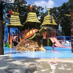 Yogi Bear's Jellystone Park Camp-Resort at Tall Pinesの写真