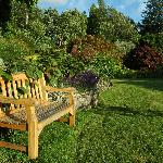  A garden bench