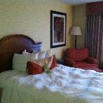 Photo de Hilton Garden Inn Kankakee