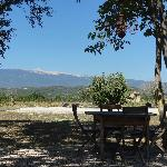 View to the Ventoux
