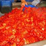 filename__big pile of crawfish_jpg_thumbnail0_jpg