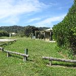 Foto de Totaranui Campground