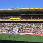 Newlands Rugby Stadium