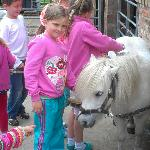 isabel and the pony x