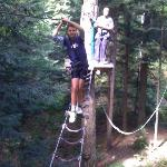  One of the treetop obstacles