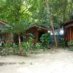 bamboo chalet