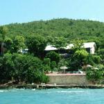 The Cove Jamaica