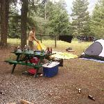 صورة فوتوغرافية لـ ‪Pinegrove Campground and R.V. Park‬