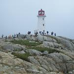 Tour of Halifax and Peggy's Cove Private Tours