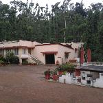 Lotus Pond Homestay