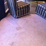 2R- a Dump. Rug is stained and dirty throughout whole unit.