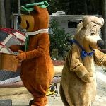 Yogi Bear's Jellystone Park Camp Resorts