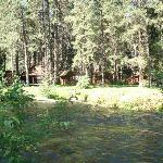 Bilde fra Cold Springs Resort and RV Park