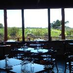 View from the dining room over the veranda to the vines