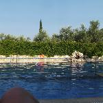 View across the pool