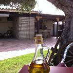 Breakfast under the olive tree