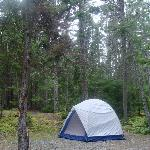 Foto van Seawall Campground
