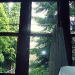 The Woodland Room (beautiful view)