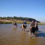 Buenos Aires Horse Adventures - Day Tours