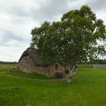 Photo of Culloden Battlefield