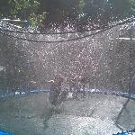 My kids loved this trampoline in the yard, where you can turn sprinklers on!