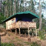 Lemur Forest Camp Ialatsara