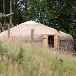 Sunny Brow Farm Yurts