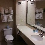Φωτογραφία: Hampton Inn & Suites, Springfield
