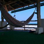  ocean view, hammocks