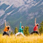 Eco Yoga Adventures