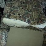 Torn seat cushion