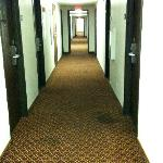 Hallways reeked of cigarette smoke and the carpets were extremely soiled.