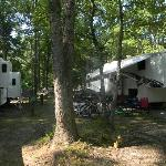 Timber Ridge RV & Recreation Resort의 사진
