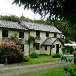 Foto van Centery Farm Bed & Breakfast