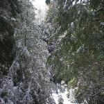 Winter hike on the Bailey property