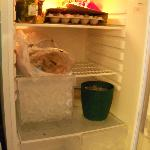 broken fridge, i used ice cubes to preserve my foods;(