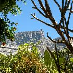  Kensington Villa is nestled benath the majestic Table Mountain
