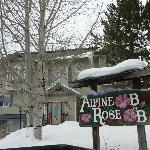 Foto van Alpine Rose Bed and Breakfast