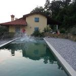 Ecco pool